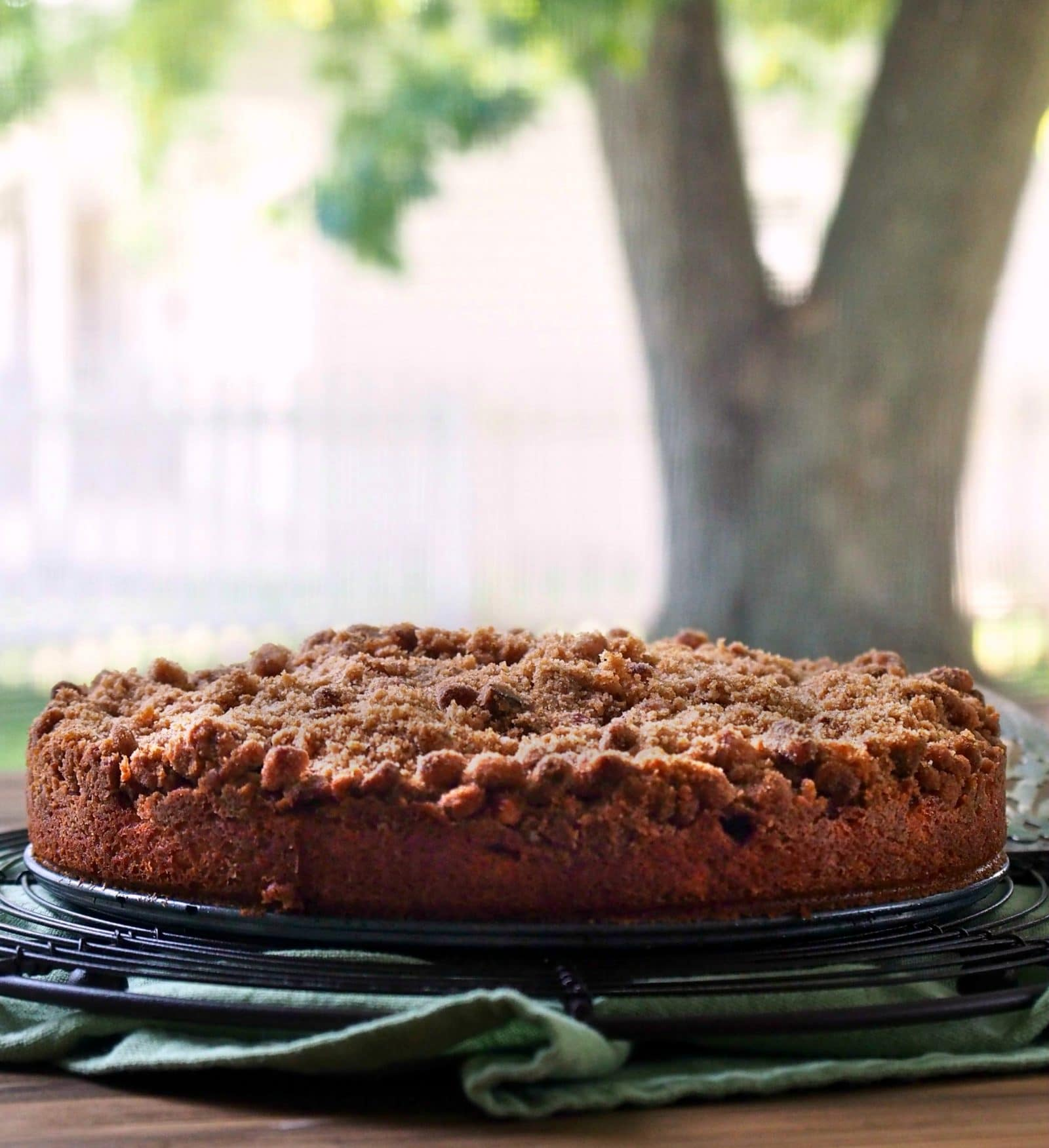Joy Of Baking Apple Streusel Cake